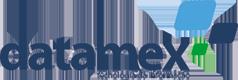 Blog Datamex logo