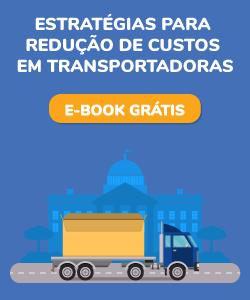 Estratégias para redução de custos em transportadoras